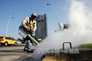 Nam Phi xác nhận ca nhiễm virus Zika đầu tiên