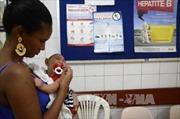 """Brazil lập """"lực lượng tí hon"""" chống Zika"""