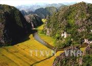 """Bom tấn """"Kong: Skull Island"""" sẽ có nhiều cảnh đẹp Việt Nam"""