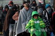 Đồng thuận về Brexit và bế tắc di cư
