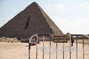 Ai Cập thừa nhận khủng bố bắn rơi máy bay Nga ở Sinai