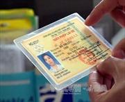 TP.HCM bắt đầu cấp giấy phép lái xe quốc tế