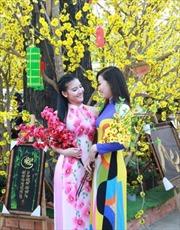 TP Hồ Chí Minh:  Nhiều hoạt động tôn vinh áo dài Việt Nam