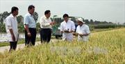 Thủ tướng yêu cầu ứng dụng KHCN ở đồng bằng sông Cửu Long