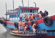 5 ngư dân bị đâm chìm tàu ở Hoàng Sa được cứu an toàn