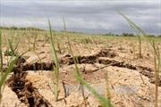 Trung Quốc sẽ xả nước xuống hạ lưu sông Mê Công