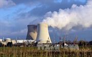 Bỉ sơ tán thêm một nhà máy điện hạt nhân