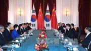 Trung - Hàn thúc đẩy đối thoại về vấn đề hạt nhân Triều Tiên
