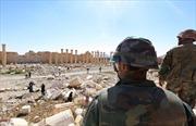 Phát hiện 42 thi thể trong mộ tập thể ở Palmyra