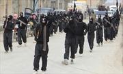 IS bắt cóc 344 công nhân Syria