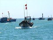 Thái Lan bắt giữ thêm 5 tàu cá của Việt Nam