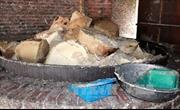 Hà Nội phát hiện cơ sở thu gom hàng tấn mỡ bẩn