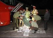 Bắt giữ hơn 200 kg ba ba và nhiều hàng Trung Quốc nhập lậu