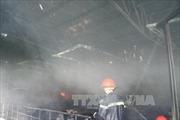 Cháy lớn thiêu trụi xưởng gỗ hàng nghìn mét vuông