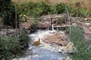 Rò rỉ khí biogas, 3 người tử vong