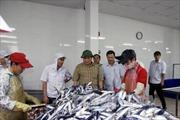 Quảng Trị hỗ trợ ngư dân tiếp tục vươn khơi bám biển