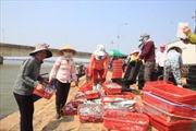 Cấp giấy xác nhận hải sản khai thác tại vùng biển an toàn