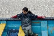 Cá biển chết hàng loạt tại Chile