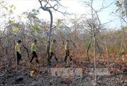 Hàng chục người tấn công kiểm lâm Đắk Glong