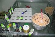 Phát hiện xưởng kem trắng da trộn hoá chất