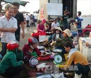 Quảng Bình đồng hành cùng ngư dân gặp khó