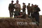 Iraq mở chiến dịch tái chiếm thị trấn chiến lược từ IS