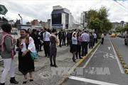 Động đất 7,2 độ Richter ở Ecuador