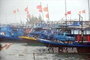 Đông Bắc Bộ và Hà Nội mưa dông rải rác