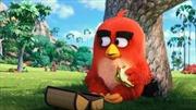 """""""Angry birds"""" đánh bật """"bộ sậu"""" siêu anh hùng"""