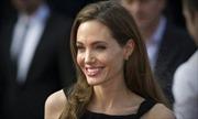 Angelina Jolie làm giảng viên thỉnh giảng