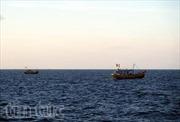 Thanh gỗ nặng 50kg rơi xuống đầu ngư dân đang đánh bắt cá
