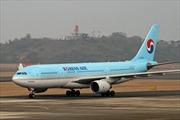 Máy bay Hàn Quốc cháy động cơ, 19 người bị thương