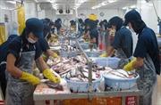 Mỹ cảnh báo hai doanh nghiệp cá da trơn Việt Nam