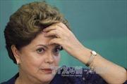 Chính phủ lâm thời Brazil đề xuất đẩy nhanh xét xử bà Rousseff