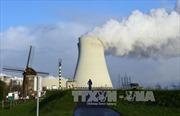 """Hà Lan """"đòi"""" Bỉ đóng cửa 2 máy điện hạt nhân bị nứt"""