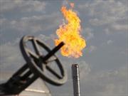 Soán ngôi Saudi Arabia, Nga xuất khẩu dầu khí số 1 thế giới