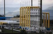 Nga không định ngừng trung chuyển khí đốt qua Ukraine