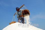 Mua tạm trữ muối để diêm dân bớt gánh nặng