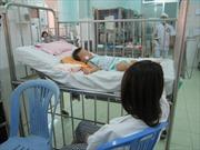 Gia tăng số trẻ mắc bệnh viêm não Nhật Bản