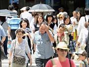 Hơn 500 người Nhật nhập viện do nắng nóng