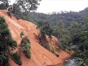 Doanh nghiệp ngang nhiên san ủi đất xuống sông Cầu