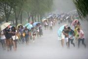 Hàng nghìn người sơ tán khi bão Nepartak đổ bộ vào Đài Loan