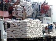 Campuchia xuất khẩu 268.190 tấn gạo nửa đầu năm