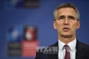 NATO tìm kiếm đối thoại với Nga
