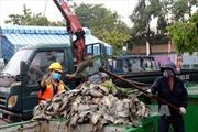 Cá chết bất thường trên thượng nguồn sông Sài Gòn