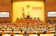 Trình Quốc hội phê chuẩn bổ nhiệm các thành viên Chính phủ