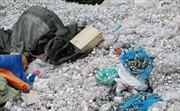 Bắc Ninh: Xử lý nghiêm các cơ sở vi phạm về quản lý chất thải y tế