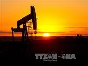 Giá dầu, vàng thế giới cùng đà tăng