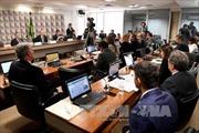 Thượng viện Brazil bỏ phiếu về việc xét xử Tổng thống Rousseff