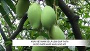 Loại quả thứ 6 của Việt Nam được phép nhập khẩu vào Mỹ